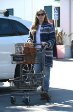 AMY ADAMS Out for Grocery Shopping in Beverly Hills 01/26/2017