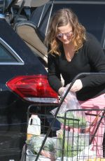 AMY POEHLER Out Shopping in Los Angeles 01/09/2017
