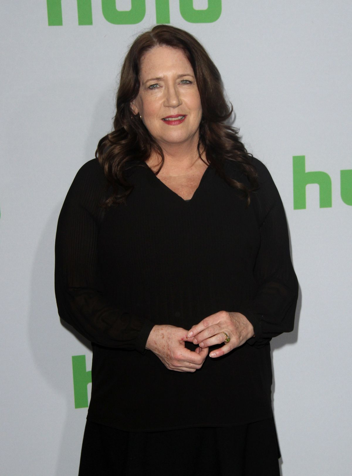 ANN DOWD at Hulu's Winter TCA 2017 in Los Angeles 01/07/2017