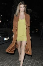 ASHLEY JAMES at Lalit Hotel Launch Party in London 01/26/2017