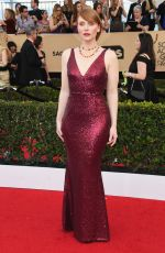BRYCE DALLAS HOWARD at 23rd Annual Screen Actors Guild Awards in Los Angeles 01/29/2017