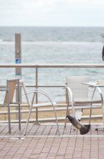 CARA DE LA HOYDE and Nathan Massey are Arguing at a Restaurant in Gran Canaria 01/24/2017
