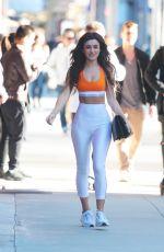 CASSIE CARDELLE Out and About in Beverly Hills 01/30/2017
