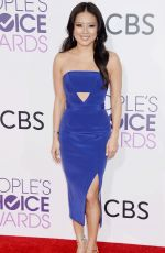 CRISTINE COLE at 43rd Annual People's Choice Awards in Los Angeles 01/18/2017