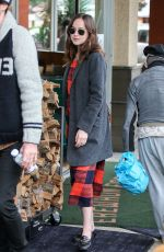 DAKOTA JOHNSON Out and About in Los Angeles 01/05/2017