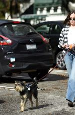 DAKOTA JOHNSON Walks Her Dog Out in Los Angeles 01/11/2017
