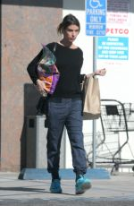ELISABETTA CANALIS Out Shopping in Beverly Hills 01/17/2017