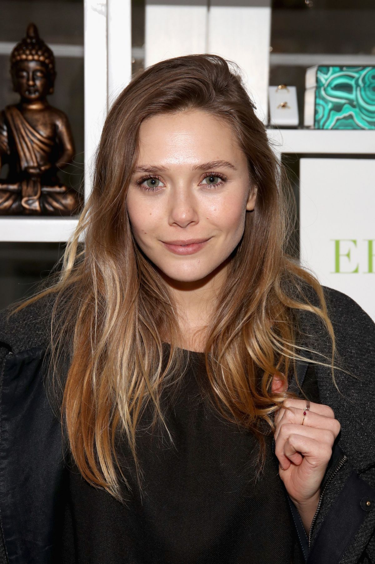 ELIZABETH OLSEN at rock4eb! with Sting and Chris Cornell in Malibu 01/14/2017