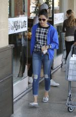 FREIDA PINTO Out Shopping in Los Angeles 01/07/2017