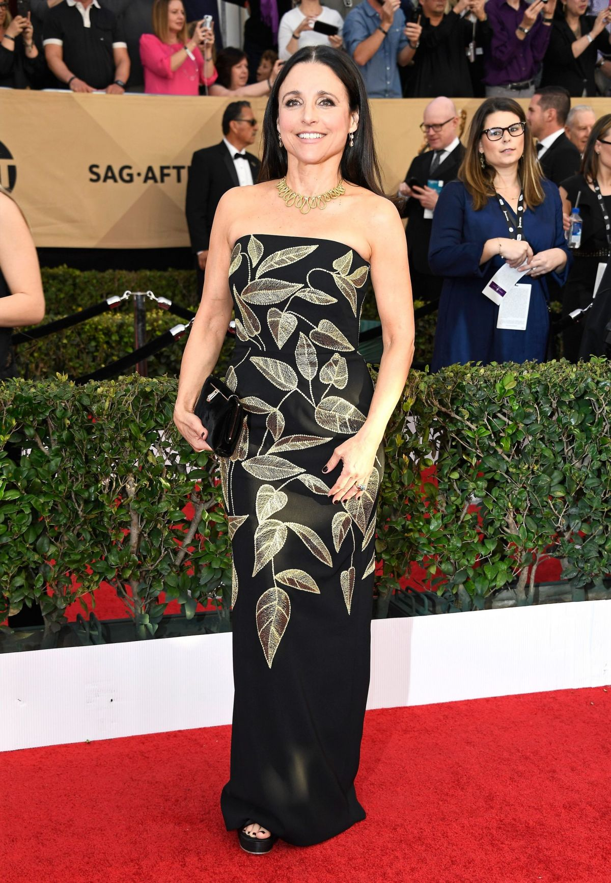 JULIA LOUIS-DREYFUS at 23rd Annual Screen Actors Guild Awards in Los Angeles 01/29/2017