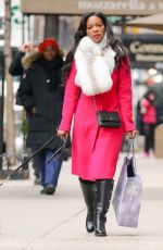 KENYA MOOR Out Shopping with Her Dogs in New York 01/0582017