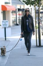 LADY VICTORIA HERVEY Out with Her Dog in West Hollywood 01/26/2017