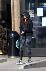 MEGAN FOX Out for Shopping in Malibu 01/17/2017