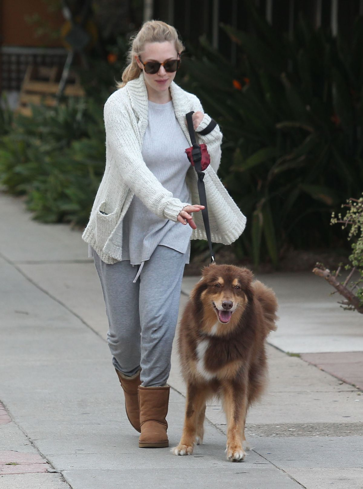 Pregnant AMANDA SEYFRIED Walks Her Dog Out in West Hollywood 01/13/2017