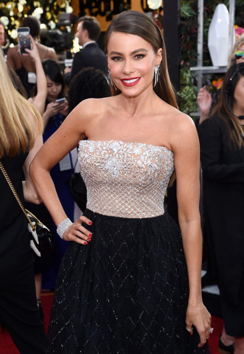 SOFIA VERGARA at 23rd Annual Screen Actors Guild Awards in Los Angeles 01/29/2017