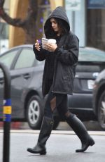 VANESSA HUDGENS Out and About in Studio City 01/12/2017