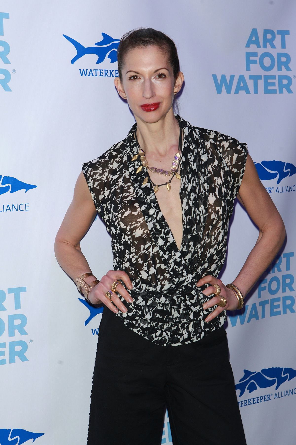 ALYSIA REINER at Art for Water Benefiring Waterkeeper Alliance Charity in New York 02/06/2017