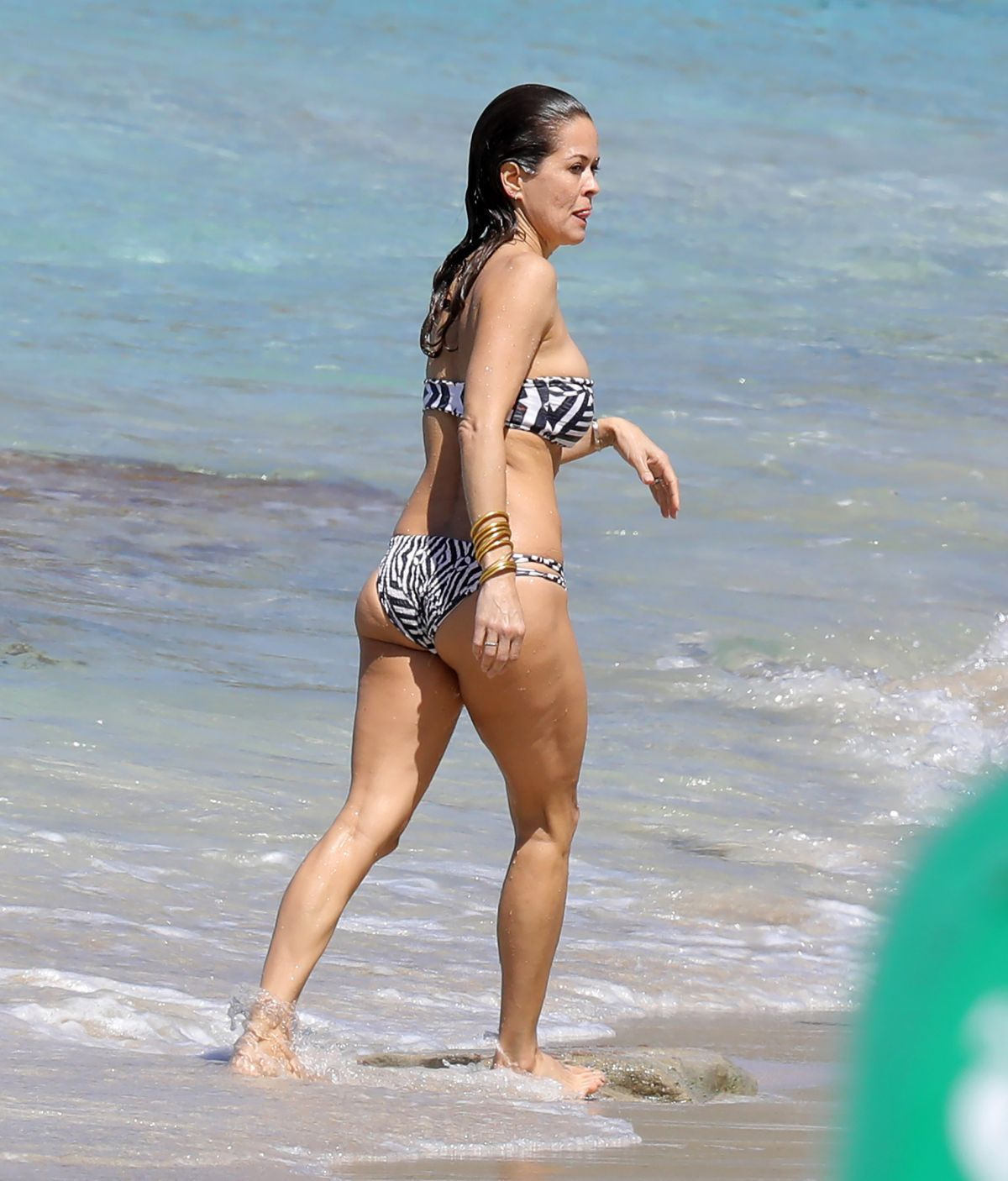Bikini Brooke Burke naked (95 foto and video), Pussy, Paparazzi, Boobs, braless 2017