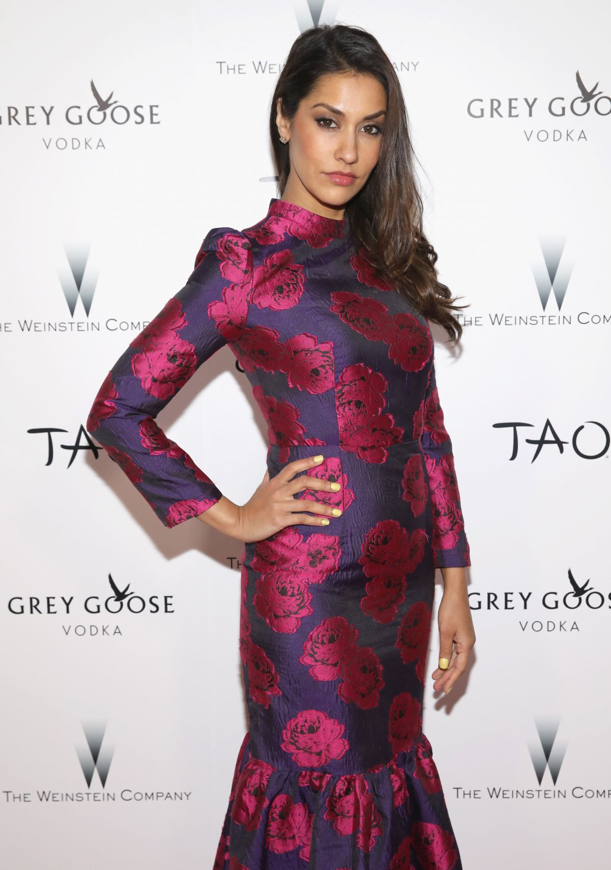 janina gavankar - photo #37