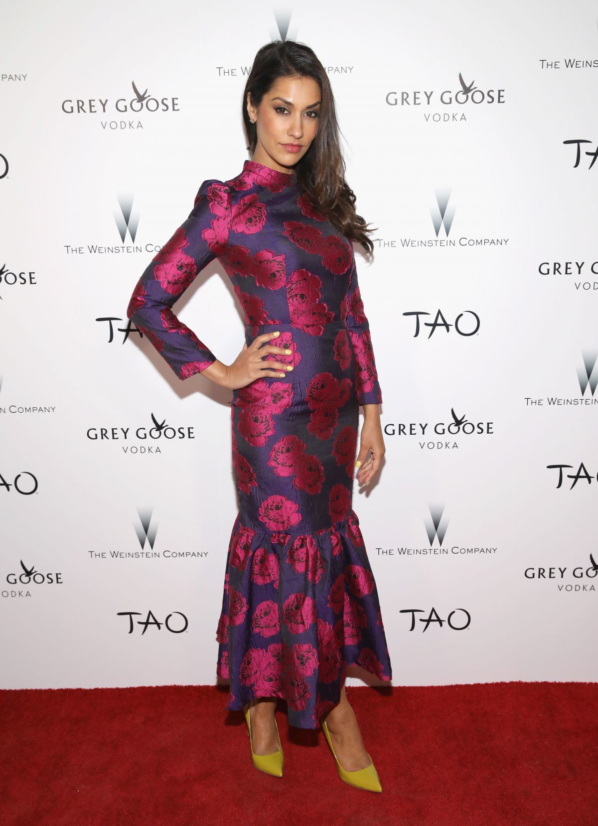 janina gavankar - photo #12