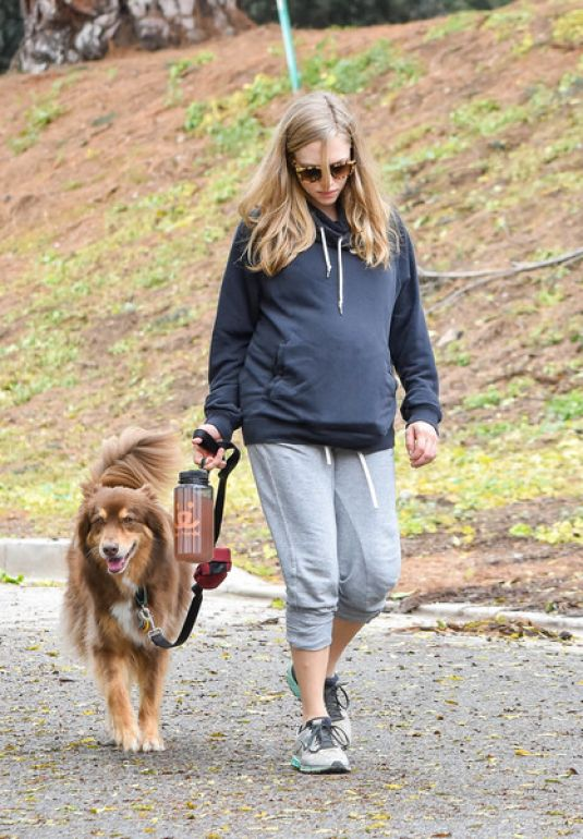 Pregnant AMANDA SEYFRIED Walks Her Dog Out in Los Angeles 02/21/2017