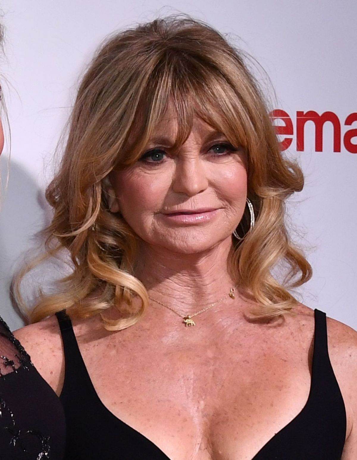 GOLDIE HAWN at CinemaCon Big Screen Achievement Awards in ...