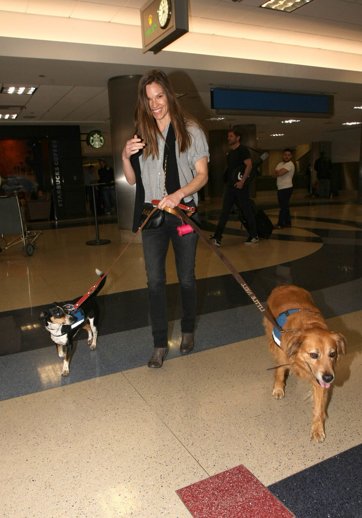 HILARY SWANK with Her Dogs at LAX AIrport in Los Angeles 03/07/2017