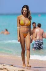 JASMINE TOSH in Bikini on the Beach in Miami 03/19/2017