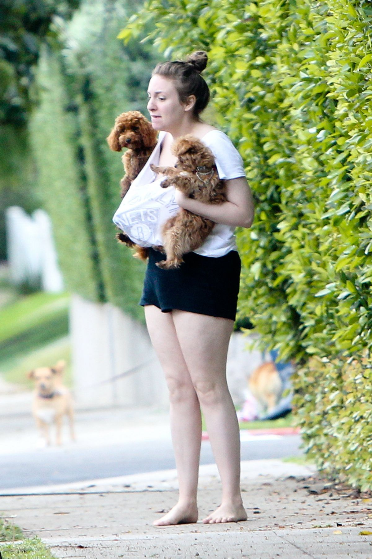 LENA DUNHAM Out with Her Dogs in Beverly Hills 03/22/2017