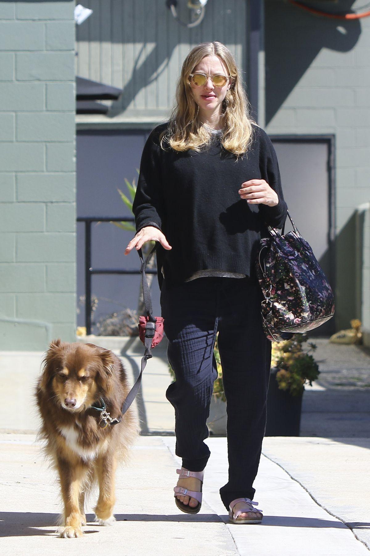 Pregnant AMANDA SEYFRIED Walks Her Dog in Studio City 03/08/2017