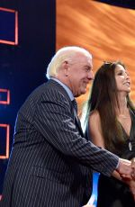 2017 WWE Hall of Fame - Red Carpet Arrivals