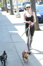 ALESSANDRA TORRESANI Walks Her Dogs Out in Los Angeles 04/10/2017