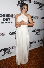 BARRETT DOSS at Groundhog Day Broadway Opening Night in New York 04/17/2017