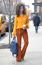 CAMILA ALVES Out in New York 04/04/2017