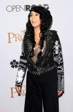 CHER at The Promise Premiere in Hollywood 04/12/2017