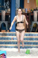 DAKOTA JOHNSON in Bikini on the Beach in Miami 04/02/2017