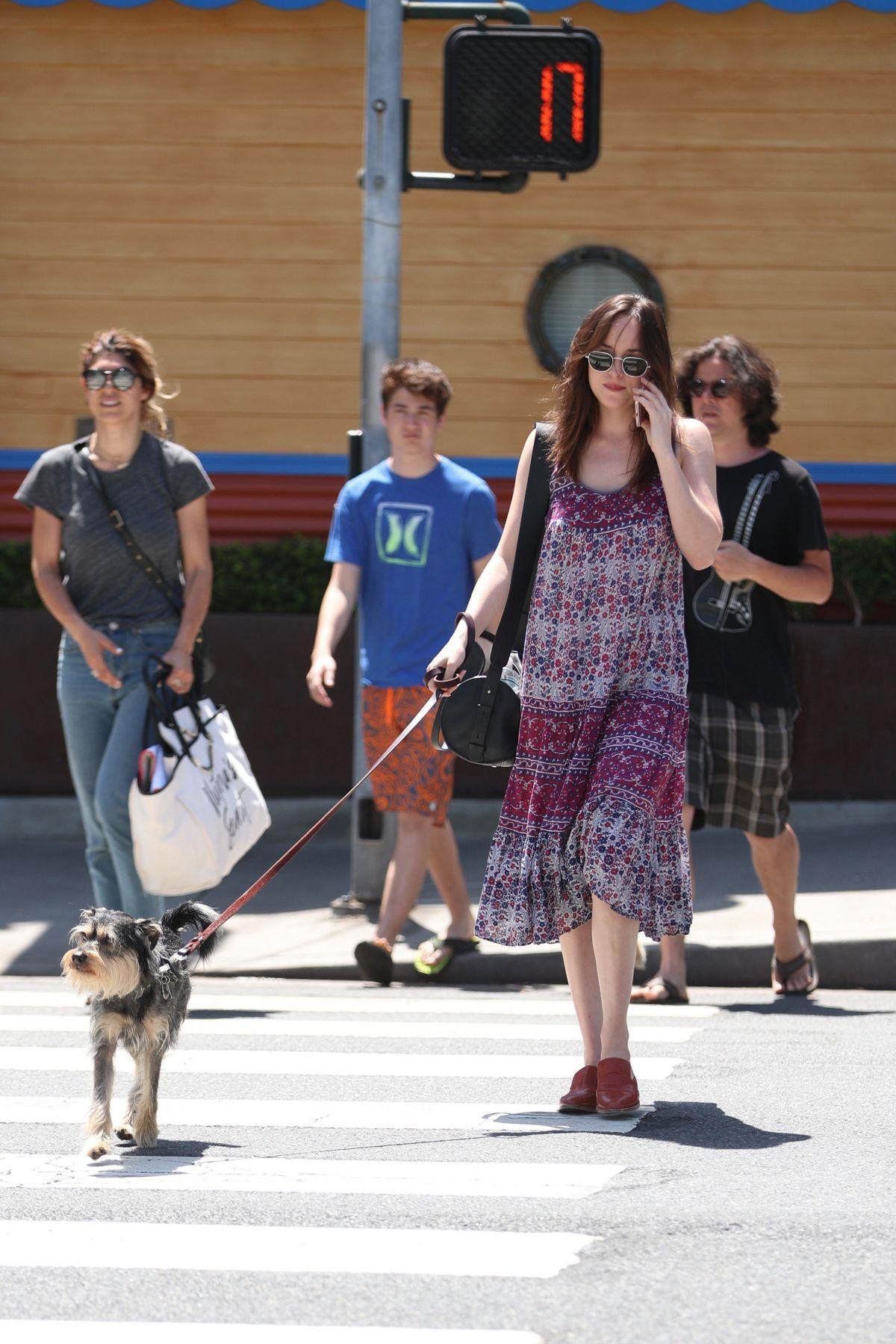 Dakota johnson walks her dog out in santa monica 04 21 for Dog hotel santa monica