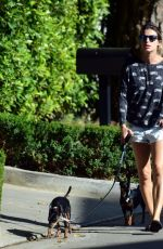 ELISABETTA CANALIS in Daisy Dukes Walks Her Dog Out in Beverly Hills 04/11/2017