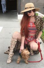 PHOEBE PRICE Out with Her Dog in Beverly Hills 04/18/2017