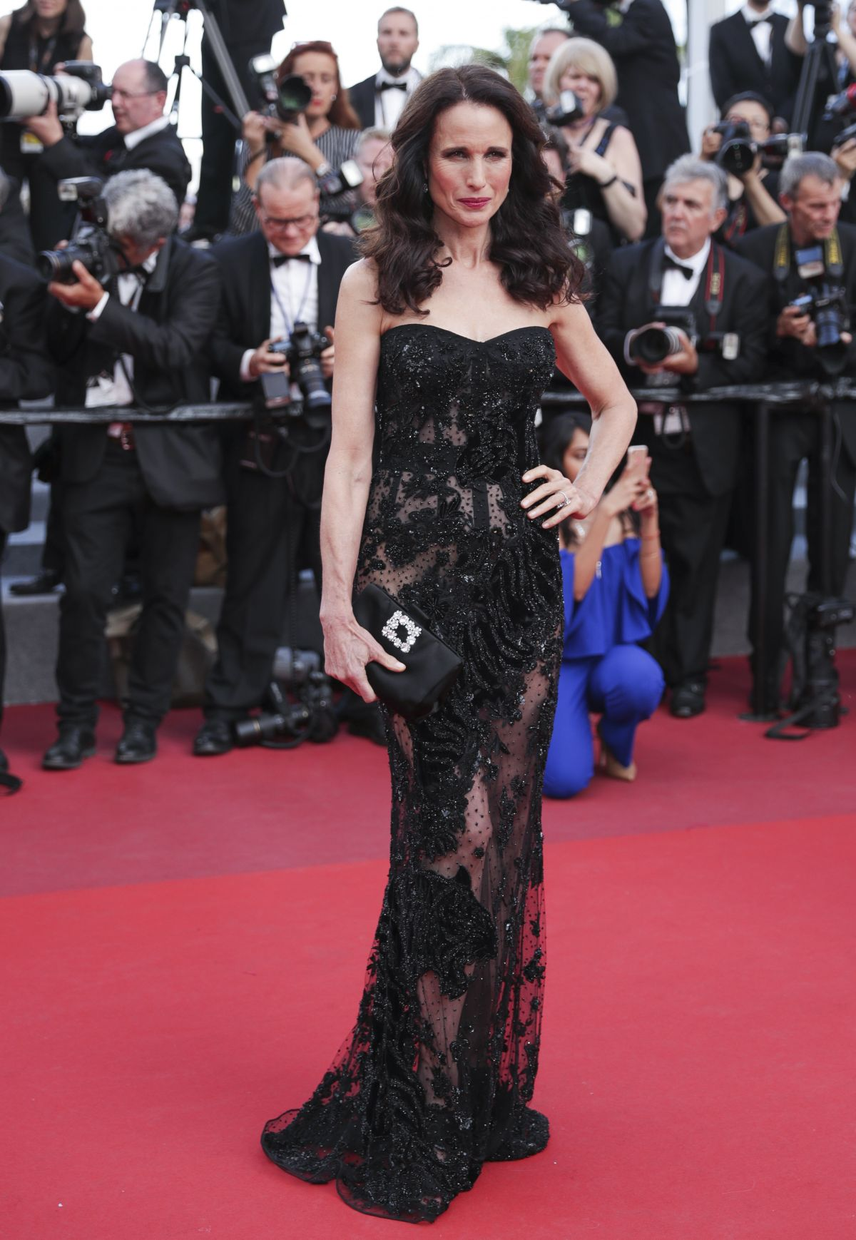 ANDIE MACDOWELL at The Killing of a Sacred Deer Premiere at 70th Annual Cannes Film Festival 05/22/2017