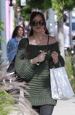 DAKOTA JOHNSON Out and About in Los Angeles 05/25/2017