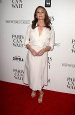 DIANE LANE at Paris Can Wait Premiere in Los Angeles 05/11/2017