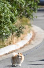 HEIDI MONTAG Walks Her Dog Out in Los Angeles 05/13/2017
