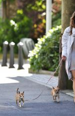KATHARINE MCPHEE Walks Her Dogs Out in Vancouver 05/24/2017