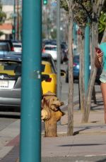 MARY CAREY Out Shopping in Studio City 05/16/2017