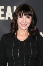 MARY STEENBURGEN at Dean Premiere in Los Angeles 05/24/2017