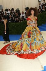 ZENDAYA COLEMAN at 2017 MET Gala in New York 05/01/2017