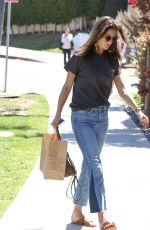 ALESSANDRA AMBROSIO in Jeans Out in Los Angeles 06/14/2017