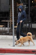 ALEXANDRA DADDARIO Out with Her Dog in Los Angeles 06/09/2017