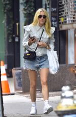 CHLOE SEVIGNY Out and About in New York 05/31/2017